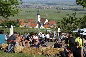 Blick in die pfälzische Ebene über ein Fest in den Weinbergen hinweg