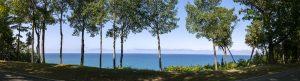 Panoramasicht auf den blauen Lake Michigan durch eine Baumreihe