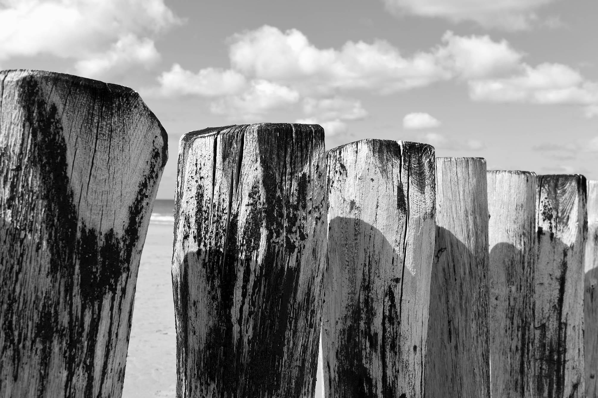 Großaufnahme der verwaschenen Holz-Buhnen am Meer in Schwarz-Weiß