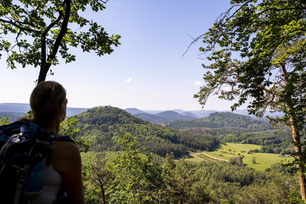 Aussicht zwischen die Berge des Pfälzer Waldes
