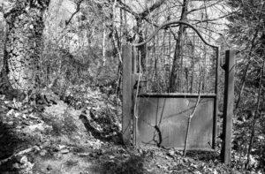 Scharz-Weiß-Foto von einem allein stehenden Metalltor im Wald